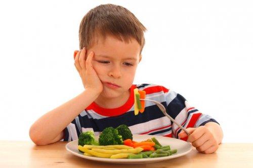 Если ребенок не есть мясо?