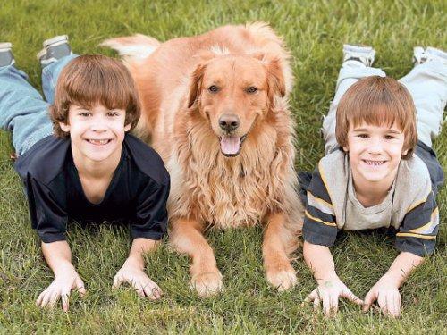 Ребенок и домашний любимец: правила дружбы